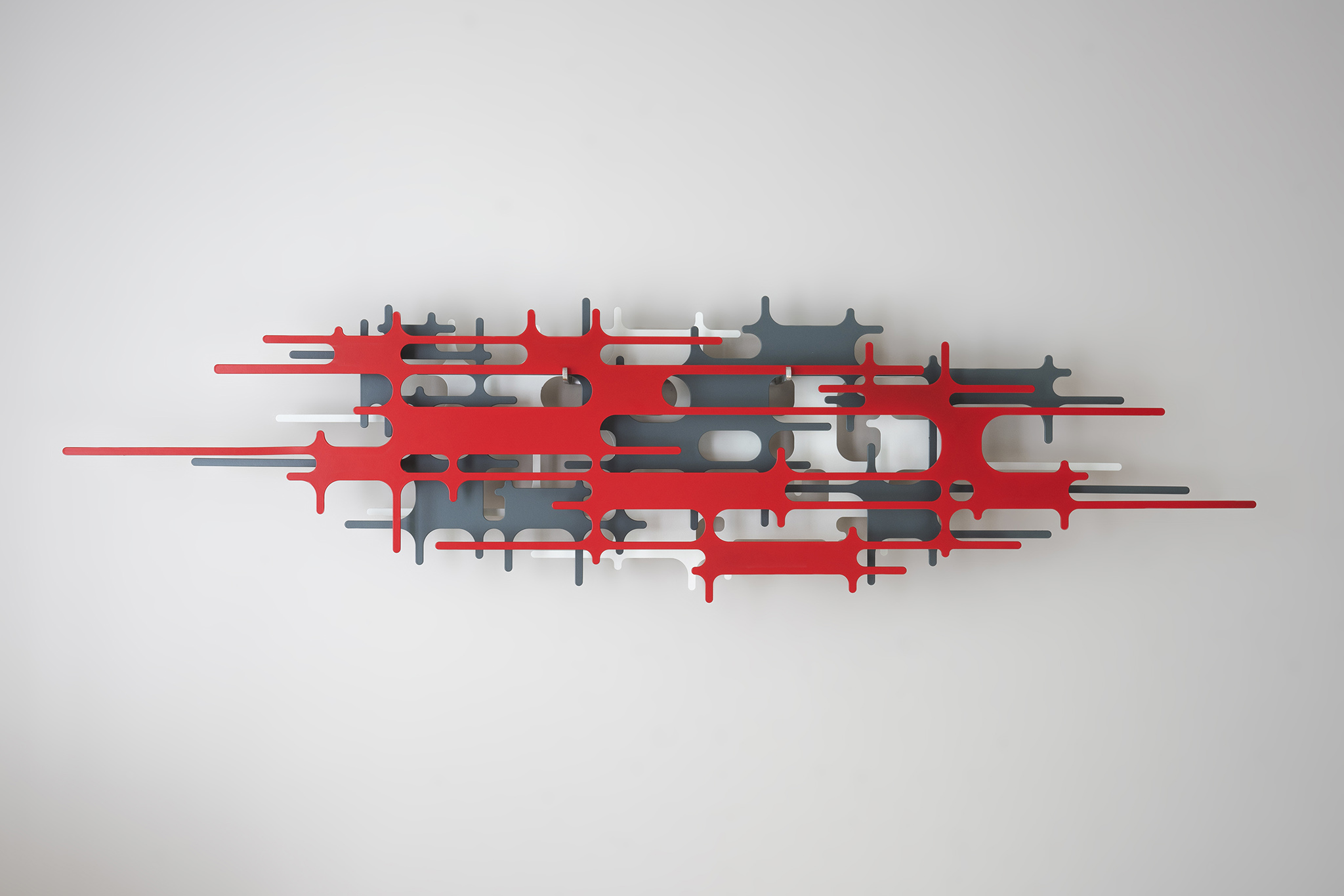 150 Lluís Carulla_ ov lab red F net