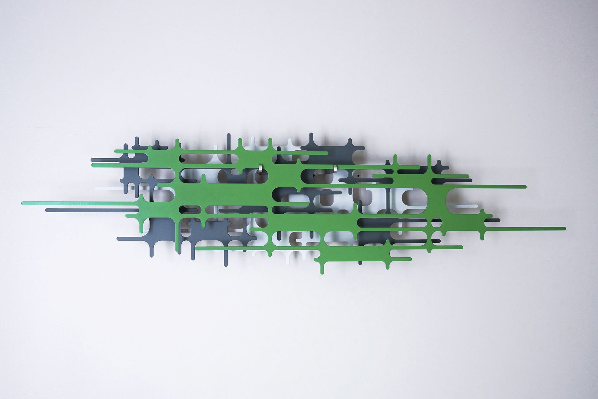 150 LluísCarulla_ov lab green F net