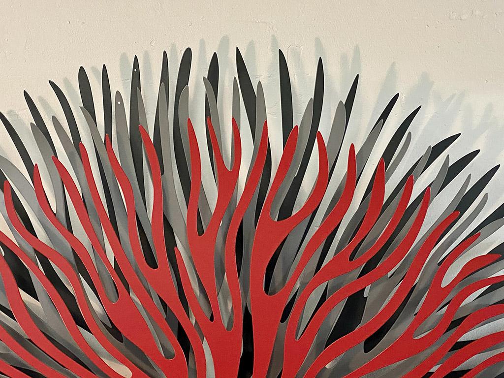 Algae red gris 3